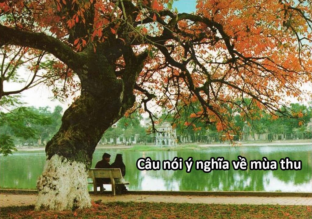 Những câu nói hay chào đón mùa thu về